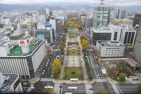 よさこい,札幌,祭り